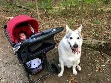 Friends go hiking together